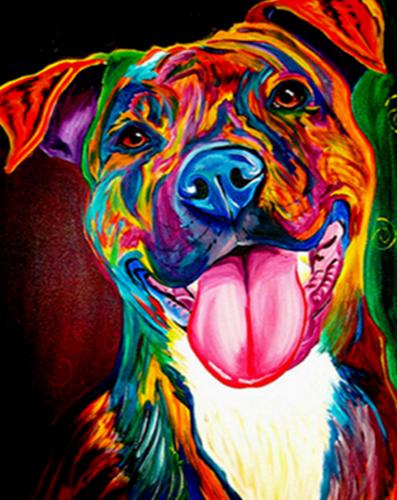 Colorful Dog - painting by numbers - Paint by Numbers Kits