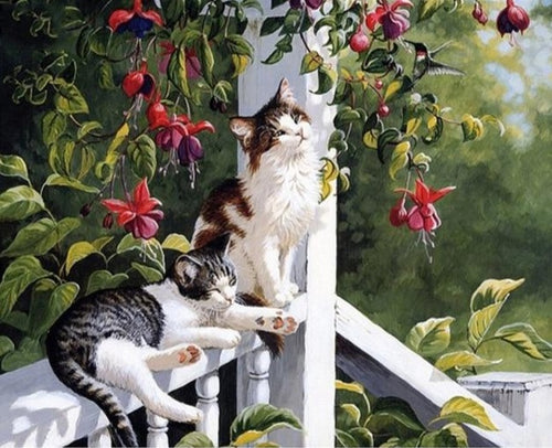 A Beautiful Couple of Cats - Paint by Numbers Kits
