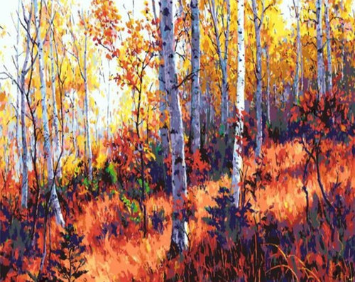 Birch Forest during Fall - Paint by Numbers Kits