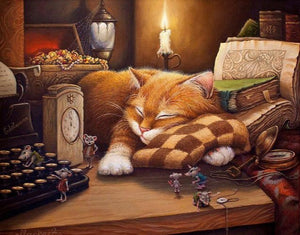 Sleeping Cat - A Wonderful Painting by Numbers - Paint by Numbers Kits
