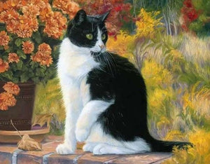 Cat Sitting in the Garden - Paint by Numbers Kits