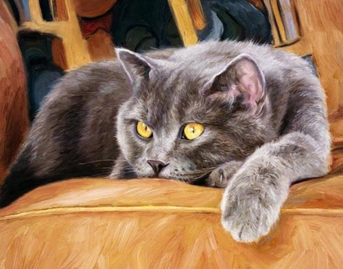 Yellow eyed Cat Lying on the Couch - Paint by Numbers Kits