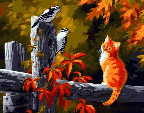 Cute Kitten with Birds - DIY art Painting by Numbers - Paint by Numbers Kits
