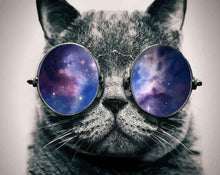Load image into Gallery viewer, Black Cat wearing Beautiful Space Glasses - Paint by Numbers Kits