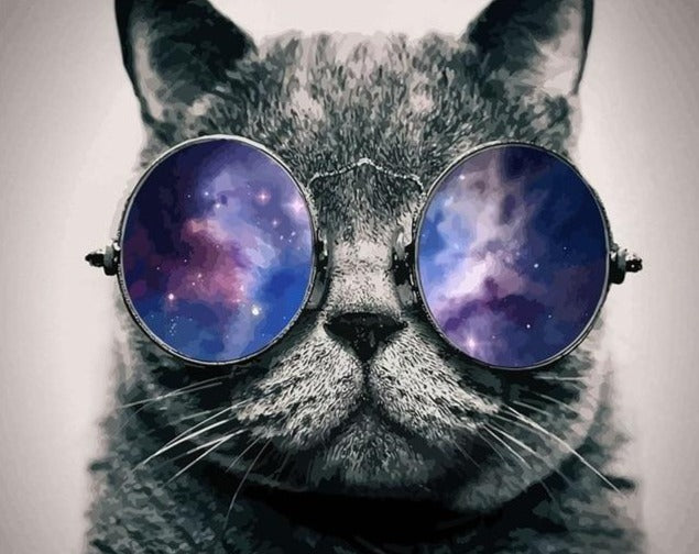 Black Cat wearing Beautiful Space Glasses - Paint by Numbers Kits