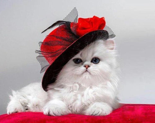 A Cute Kitten with Red Hat - Paint by Numbers Kits