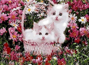 Cutest kittens in the Garden - Paint by Numbers Kits