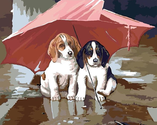 A Beautiful Dog Couple - Paint by Numbers Kits