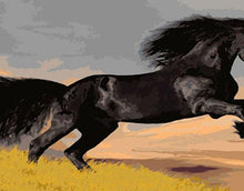 Load image into Gallery viewer, Black Horse Painting - Paint by Numbers Kits