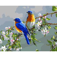 Load image into Gallery viewer, Lovely Blue Birds - Paint by Numbers Kits