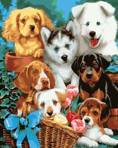A Group of Dogs - Paint by Numbers Kits
