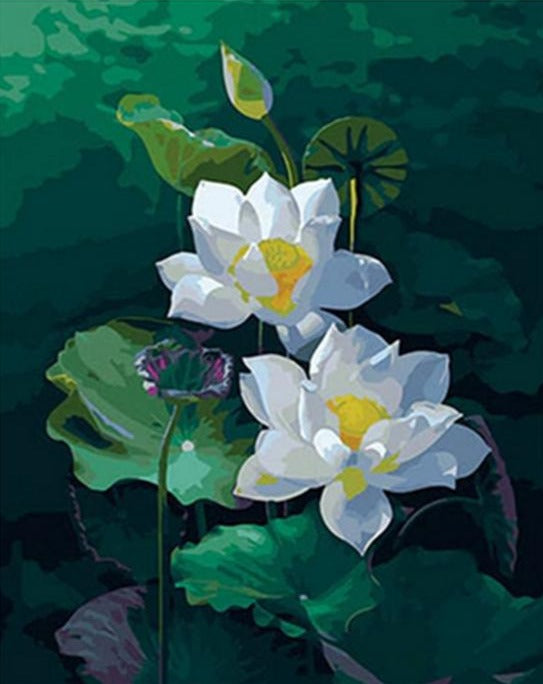Lotus Flowers - Paint by Numbers Kit - Paint by Numbers Kits