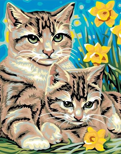 Beautiful Cats - Painting by Numbers for All - Paint by Numbers Kits