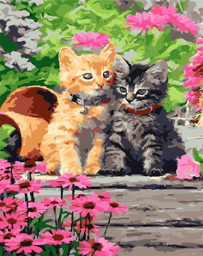 Beautiful Kittens in the Garden - Paint by Numbers Kits