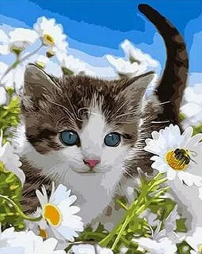 Cute Cat in Daisy Garden - DIY Painting by Numbers - Paint by Numbers Kits