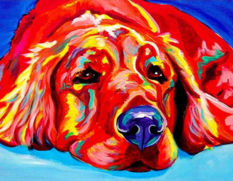 Colorful Sad Dog - Paint by Numbers - Paint by Numbers Kits