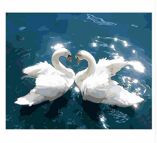 Swan Couple Paint by Numbers - Paint by Numbers Kits