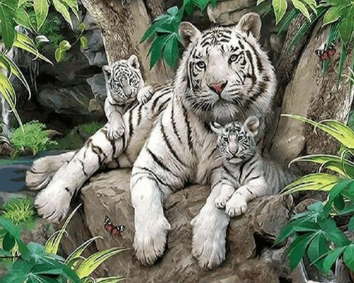 White Tiger with Cubs - Painting Kit - Paint by Numbers Kits