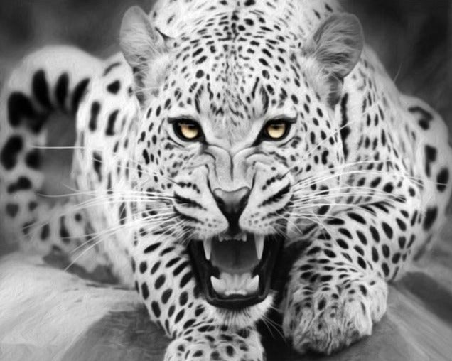 Tiger - Ready to Prey - Black & White Painting by Numbers - Paint by Numbers Kits