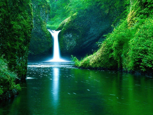 Beautiful Waterfall in Green Forest - Diamond Painting - Paint by Numbers Kits