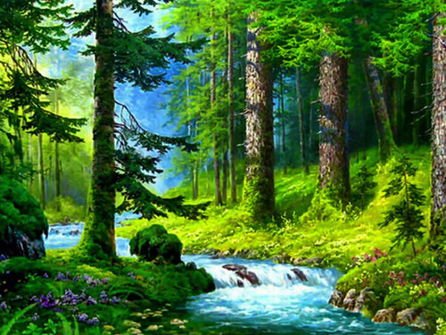 Stream Flowing in the Green Forest - Paint by Numbers Kits
