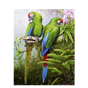 Lovely Birds Paint By Numbers For Adults & Children - Paint by Numbers Kits