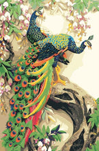 Load image into Gallery viewer, Beautiful Peacock Couple DIY Painting - Paint by Numbers Kits