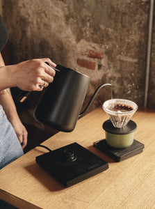 Timemore Fish Electric Pour-over Kettle