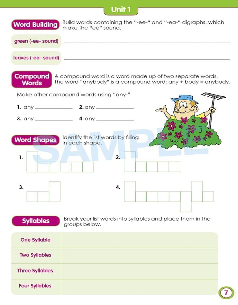 Grade 3 English Packs - Image of the pack contents