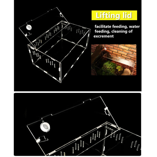 Reptile Tank Insect Spiders Tortoise Lizard Acrylic Transparent Breeding Box Vivarium Lid Reptile