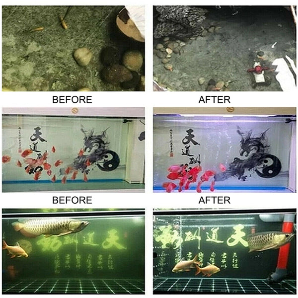 Eco-Aquarium Filtration Material Rapid Water Purification Mini Fish Tank Carbon Adsorption Filter