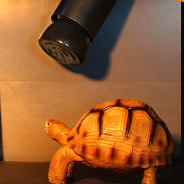 E27 Far-Infrared Ceramic Pet Heating Lamp for Tortoise Lizard Spider Reptile Box Warmer Light Bulbs