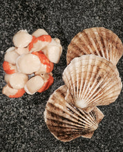 Load image into Gallery viewer, Fresh King Scallops
