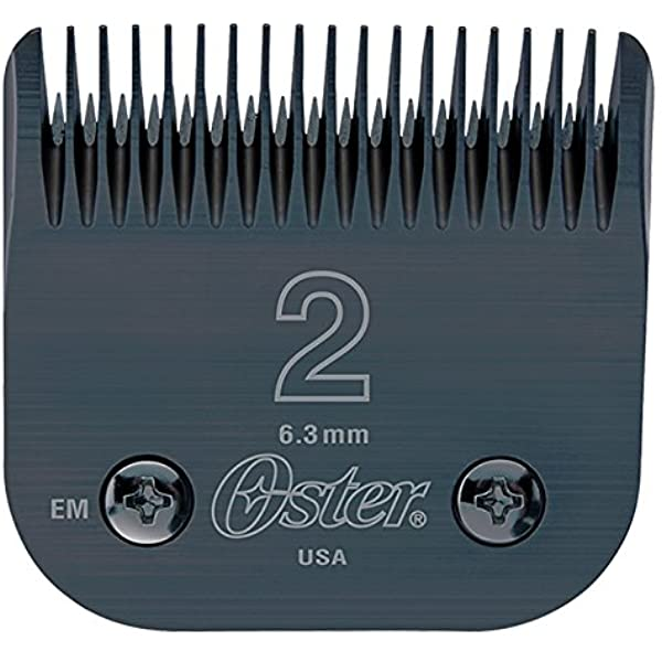 Oster Detachable