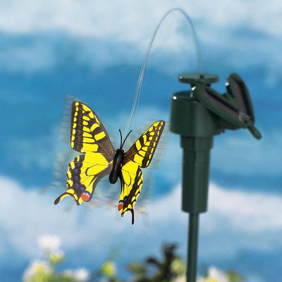 Solar Dancing Hummingbird & Butterfly
