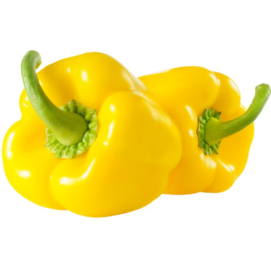 Capsicum Yellow x 2