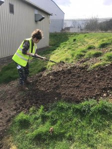 Katie our Beekeeping apprentice planting wildflower seeds