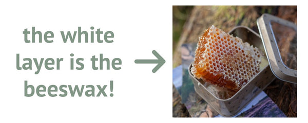 honeycomb with white wax on top, with text stating 'the white layer is the beeswax'