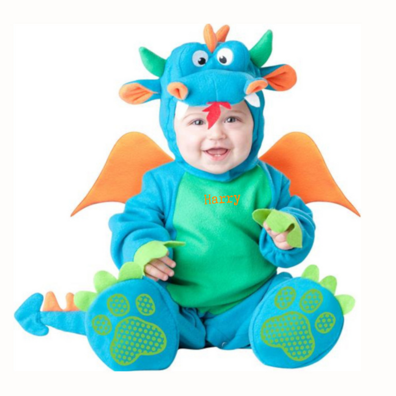 Baby Dragon Costume- Personalised Baby Gift
