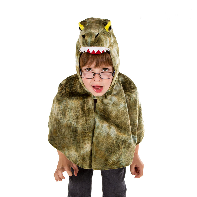 Children's Crocodile Costume -Fancy Dress Cape , Children's Costume - Pretend to Bee, Ayshea Elliott 3