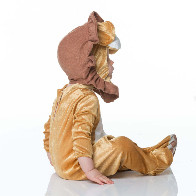 Lovable Lion - Baby Lion Costume , Baby Costume - In Character, Ayshea Elliott - 5