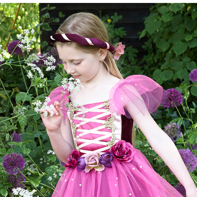 Plum Princess Dress