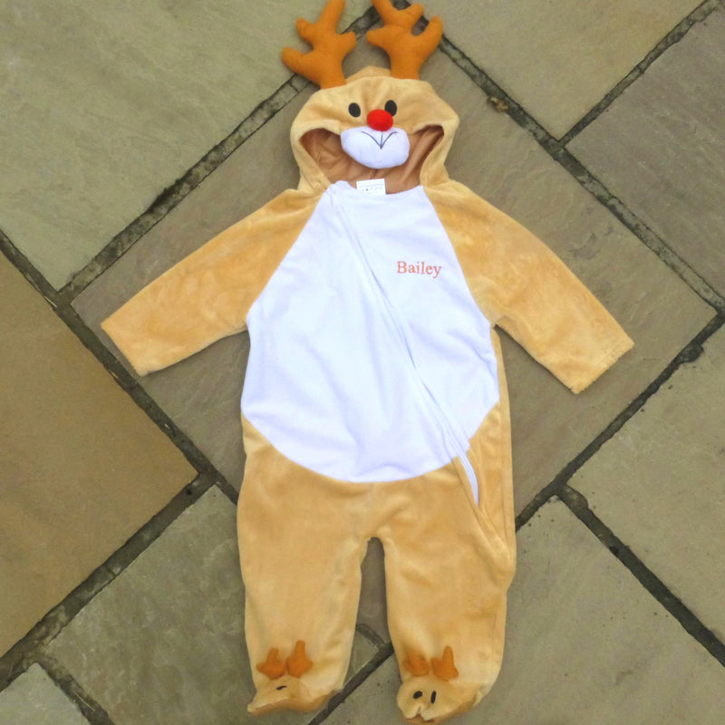 Personalised  Rudolph Reindeer Fancy Dress Costume