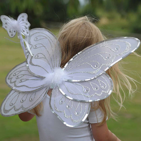 Children's Fairy Wing & Wand Dress Up