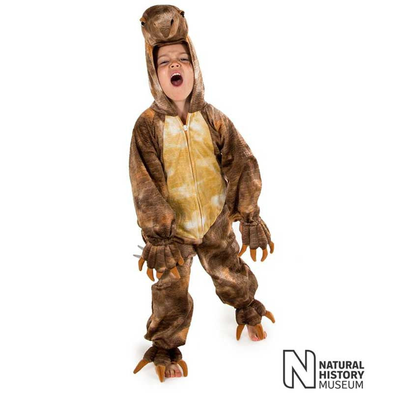 Official Natural History Museum Stegosaurus Costume , Children's Costume - National History Museum, Ayshea Elliott  - 3