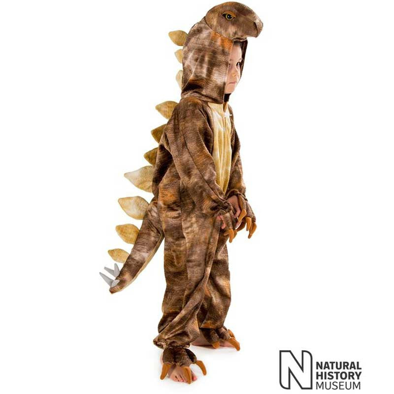 Official Natural History Museum Stegosaurus Costume , Children's Costume - National History Museum, Ayshea Elliott  - 1