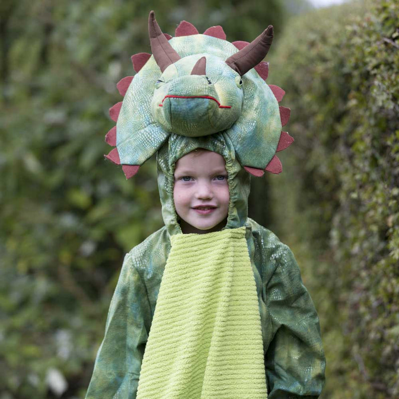 Children's Triceratops Dress Up , Dinosaur Costume, Children's Costume - Time to Dress Up, Ayshea Elliott - 8