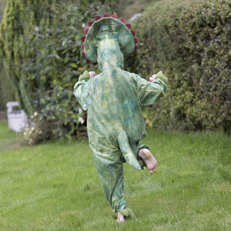 Children's Triceratops Dress Up , Dinosaur Costume, Children's Costume - Time to Dress Up, Ayshea Elliott - 9