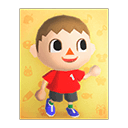 Villager's poster