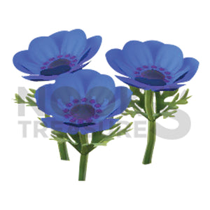 Blue-Windflower Plant